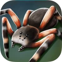 My Pet Spider 3D Free
