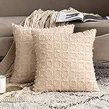 MIULEE 2 kussenslopen, vierkant, kwasten, duurzaam, voor bank, bed, stoel, decoratie voor thuis, decoratief kussen, comfortab