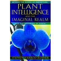 Plant Intelligence and the Imaginal Realm: Beyond the Doors of Perception into the Dreaming of Earth-