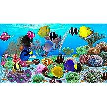 Unterwasserwelt Bildschirmschoner [Download]