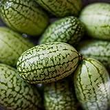 Caliente 10Pcs Cucamelon mini sandía semillas de plantas de frutas hogar miniatura Jardín BD57