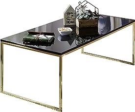 FineBuy Couchtisch RAVI 120x45x60 cm Metall Holz Sofatisch Schwarz   Design Wohnzimmertisch quadratisch   Stubentisch mit Metallgestell   Kaffeetisch klein   Wohnzimmer Loungetisch modern
