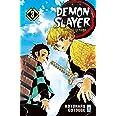 Demon slayer. Kimetsu no yaiba (Vol. 3)