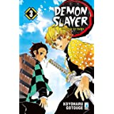 Demon slayer. Kimetsu no yaiba (Vol. 3)