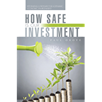 How Safe Is Our Investment: Rethinking a Pathway for a Dynamic Economic Environment (English Edition)