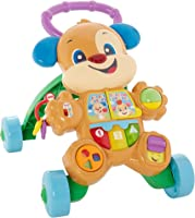 Fisher-Price Cagnolino Primi Passi Spingibile, Giocattolo Elettronico Educativo con Musica e Suoni, per Bambini di 6 +...