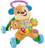 Fisher-Price FRC84 Cagnolino Primi Passi Spingibile, Giocattolo Elettronico Educativo con Musica e Suoni, per Bambini di 6 + Mesi