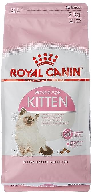 royal canin 55103 kitten 10 kg katzenfutter bunte. Black Bedroom Furniture Sets. Home Design Ideas