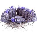 Quertee 10x lavendelzakjes geurzakjes met lavendelbloemen als bescherming tegen motten in de kledingkast met Franse lavendel