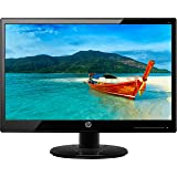 HP 18.5 inch (46.9 cm) LED Backlit Computer Monitor - HD, TN Panel with VGA Port - 19KA (Black)