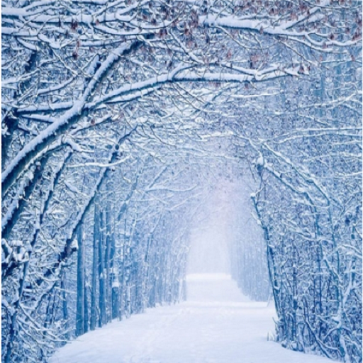 Awesome Snow Winter Wallpapers Amazon Co Uk Appstore For Android