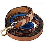Petsup Handmade Braided Padded Leather Dog Leash (6 Feet X 1 Inch, Tan/Blue)