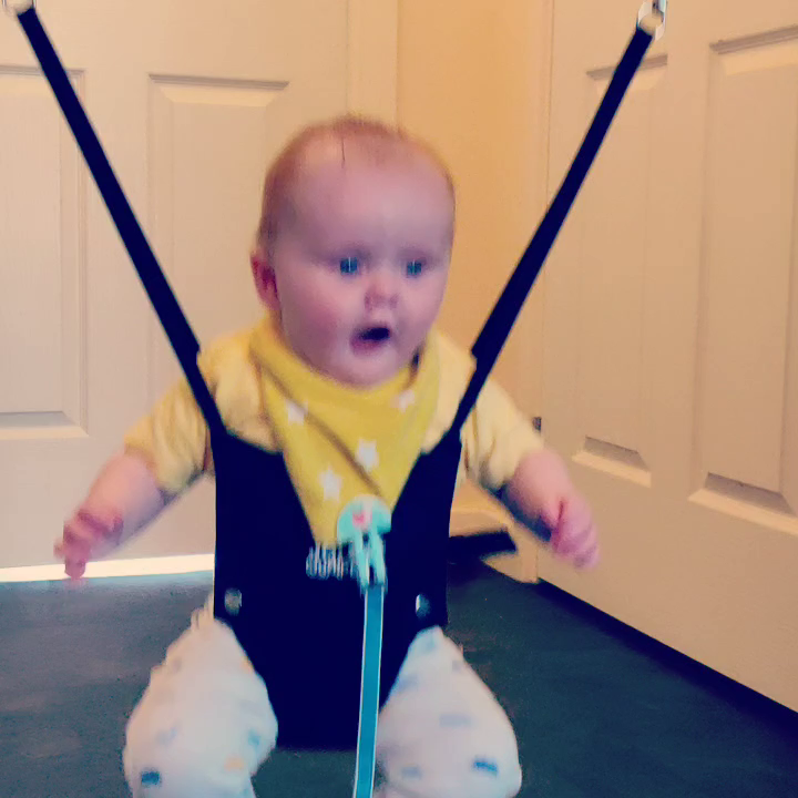 The Original Jolly Jumper Baby Excerciser: Amazon.es: Bebé