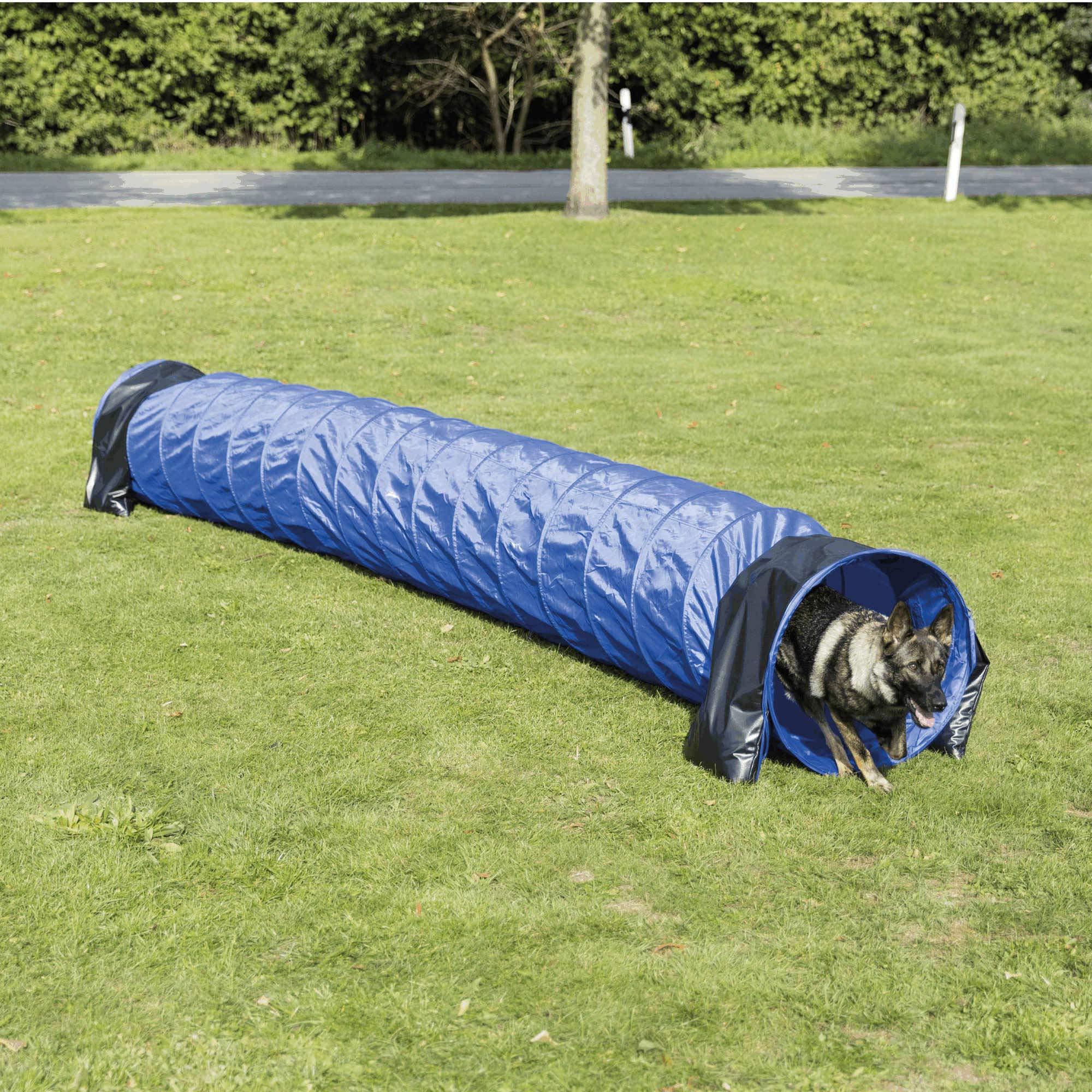 Trixie Dog Activity Agility Basic Tunnel, 60 cm ラ 5 m, Blue
