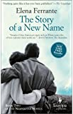 The Story of a New Name: My Brilliant Friend Book 2: Youth: 02 (Neapolitan Quartet, 2)