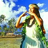 Hawaiisches Radio