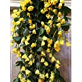 SAMRIDDHI Artificial Hanging Orchid Rose Shaped Flowers (Multicolour, 1 Piece)