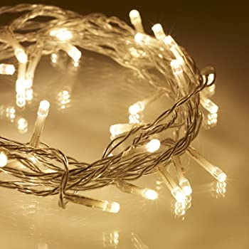 Lights4fun Indoor Fairy Lights With 100 Warm White Leds On