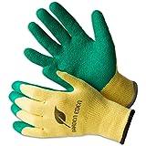 3x Garden Eden Gartenhandschuhe EN 388 | Pflanz- und Bodenhandschuhe für Arbeiten im Garten | Ideal auch als Rosenhandschuhe oder Beethandschuhe | Handschuhe zum Graben | Größe: 10 (XL)