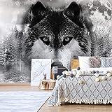 Grey Wolves Hunting Wall Mural Wallpaper WS-42830