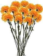 Fourwalls Single Carnation (Set of 15)