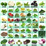 Leafy Tales 50 Varieties of Vegetable, Fruits & Herbs Seeds for Kitchen Garden - 2500+ Seeds | Easy to Grow