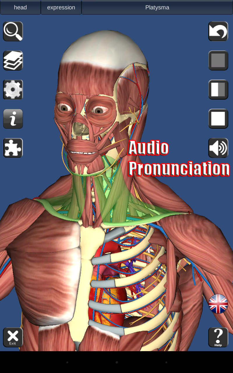 3D Anatomy: Amazon.de: Apps für Android