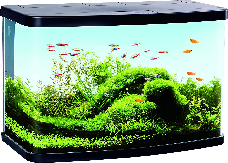 Komplett Neu Duvo + Aquarium Panorama VS60 Filter für Aquaristik schwarz  XY36
