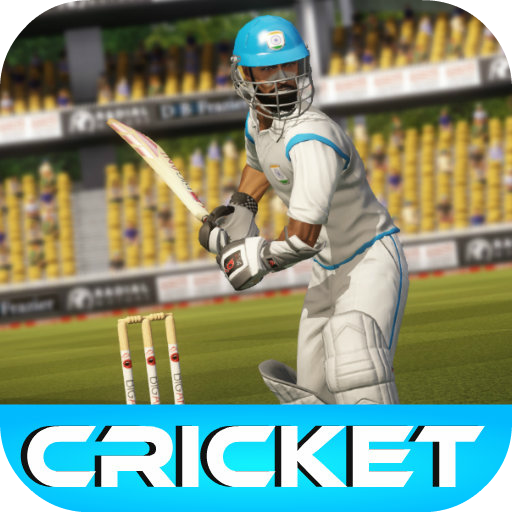 cricket-game-2015