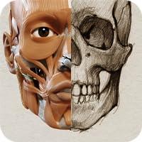 Anatomía 3D para el artista