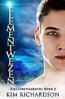 Elementwezen (Zielenbewaarders Book 2)