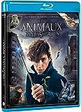 Les Animaux fantastiques - Le monde des Sorciers de J.K. Rowling