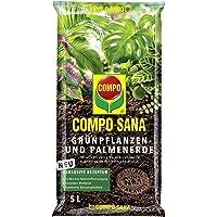 COMPO SANA Grünpflanzen- und Palmenerde mit 12 Wochen Dünger für alle Zimmer- und Balkonpflanzen sowie Palmen und Farne…
