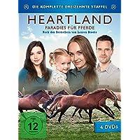 Heartland - Die dreizehnte Staffel [4 DVDs]