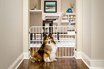 Carlson Pet Tuffy Metal Expandable Pet Gate