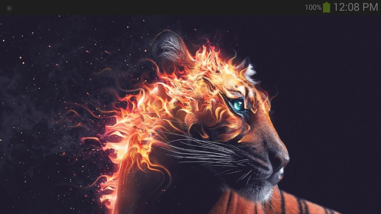 Fond D écran Animaux Fantastiques Amazon Fr Appstore Pour