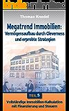 Vollständige Immobilienkalkulation mit Finanzierung und Steuern (Megatrend Immobilien: Vermögensaufbau durch Cleverness und erprobte Strategien 5)