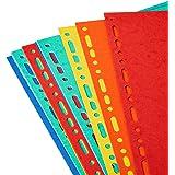 Exacompta - Réf. 2112E - Intercalaires en carte coloris vifs recyclée 220g/m2 avec 12 onglets neutres - Format à classer A4 m