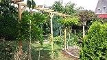 Pergola Terni Flora Doble – Dimensiones: 450 x 60 x 240 cm (B X T x h): Amazon.es: Jardín