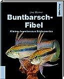 Buntbarsch-Fibel Südamerika