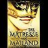 Die Mätresse von Mailand: Historischer Roman