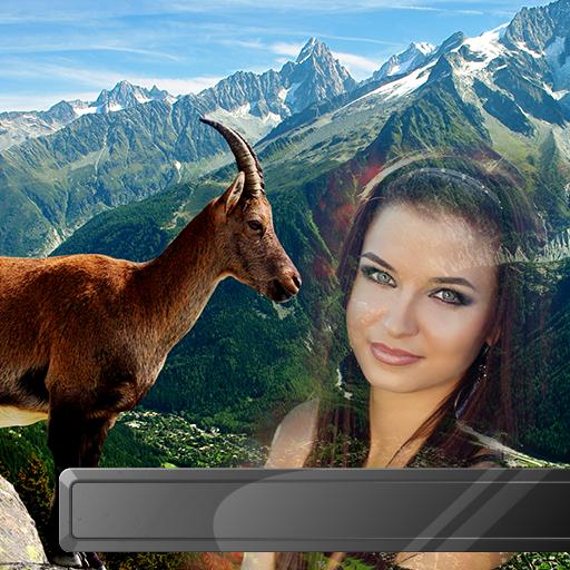 Wilde Tiere Bilderrahmen -
