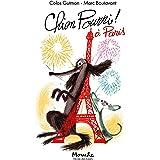 Chien Pourri à Paris (Mouche)