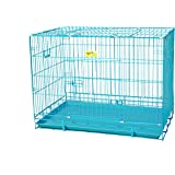 Smarty Pet Poweder Coated Iron Cage with Removable Tray for Dog (36-inch, Large Blue)