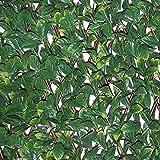 Siepe artificiale con foglie 3D su traliccio estensibile in salice, Tenax Divy 3D X-Tens Osmanthus, 1x2 m