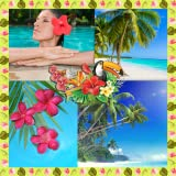 Collage di foto tropicali