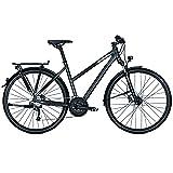 RALEIGH Damen RUSHHOUR 3.0 DISC Fahrrad, Darkgrey matt, 45
