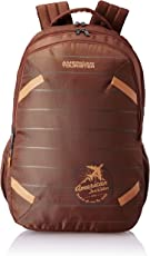 American Tourister Alto 31.5 Ltrs Rust Casual Backpack (Fh8 (0) 12 001)
