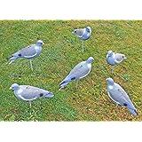 Nitehawk 6 x Painted Full Body Pigeon Decoy Shell Hunting Shooting Fake Bird Decoying Pack
