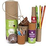 bioQ Eco Friendly Mini Grow Kit | Includes : Mini Coco Pot & Coco Peat, 1 Box of 9 Plantable Crayons & 1 Box of 5 Seed Pencil